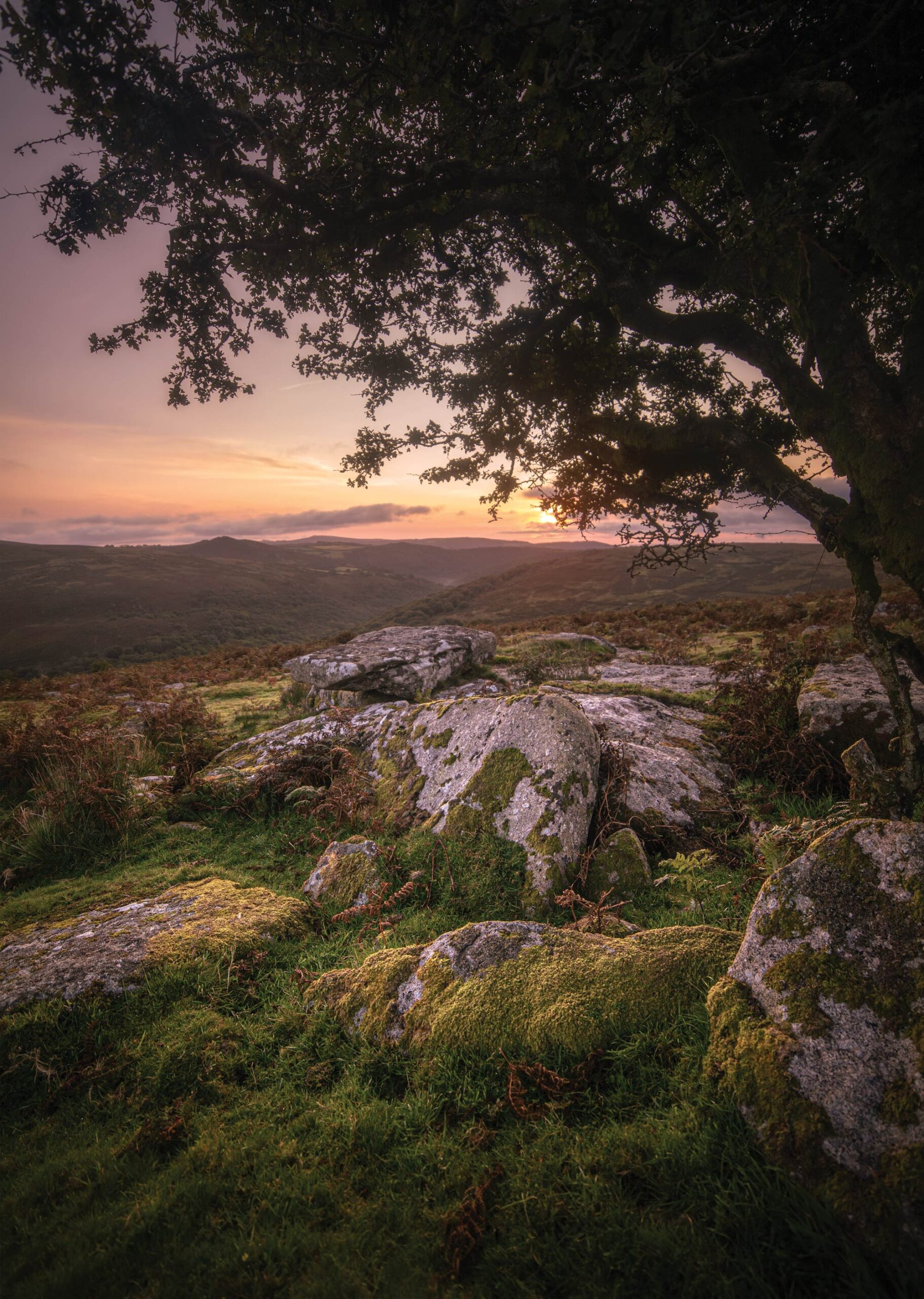 Dartmoor | Combstone Tor